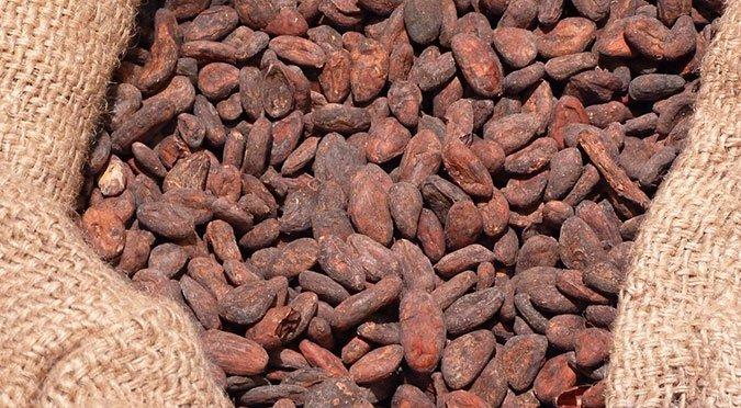 Cocoa Futures Continue Uptrend